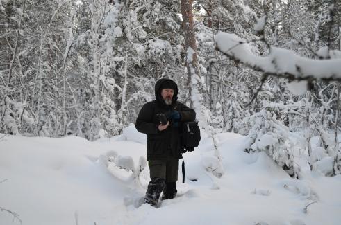 Hasse i snön