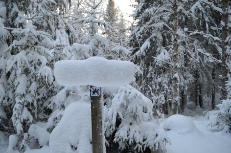 Snöig skylt