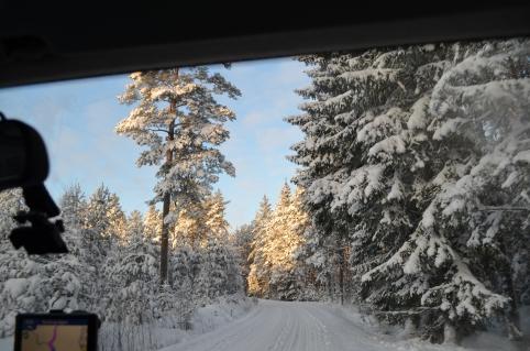 Vinterväg i Broddbo