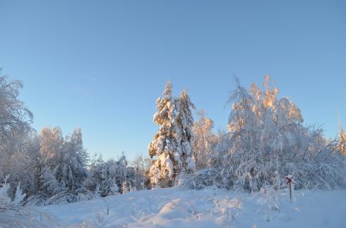 Snön ligger djup längs skoterleden