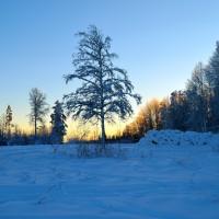 En dag i vintersolen
