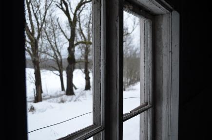Allé utanför fönstret