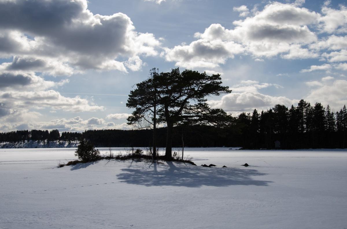 En massa öar i sjön Grycken
