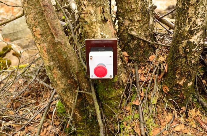 Stoppknapp i skogen