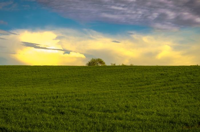 Gröna ängar och moln