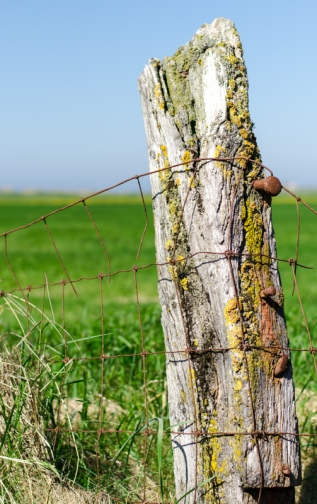 Vacker staketstolpe