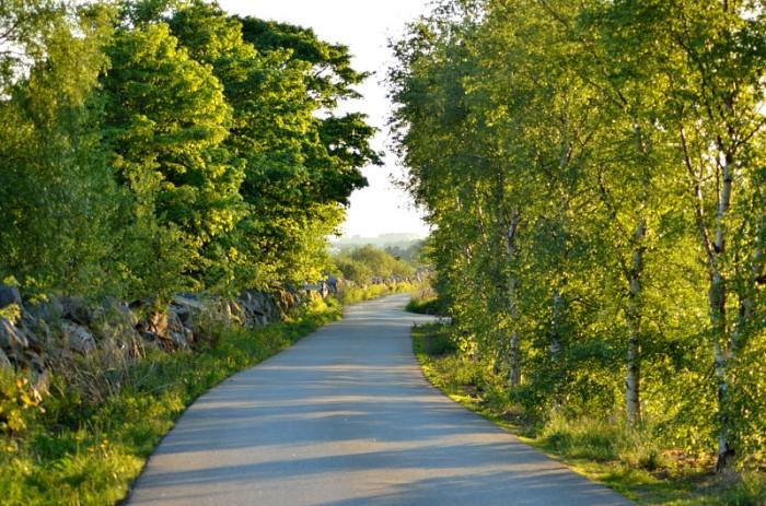 Vägen vid Vølstadskogen