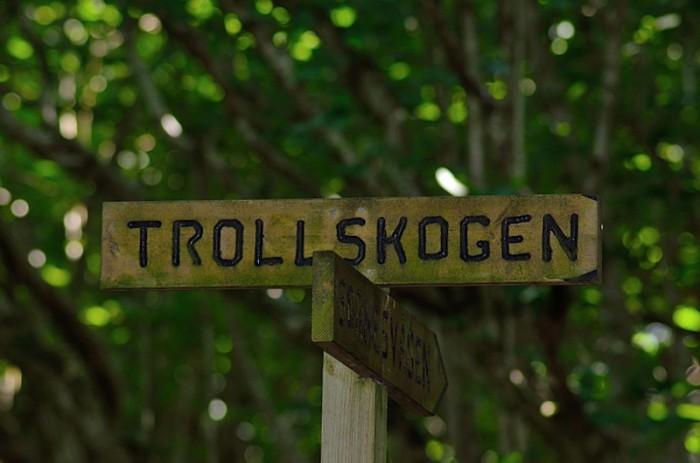 Trollskogen skylt