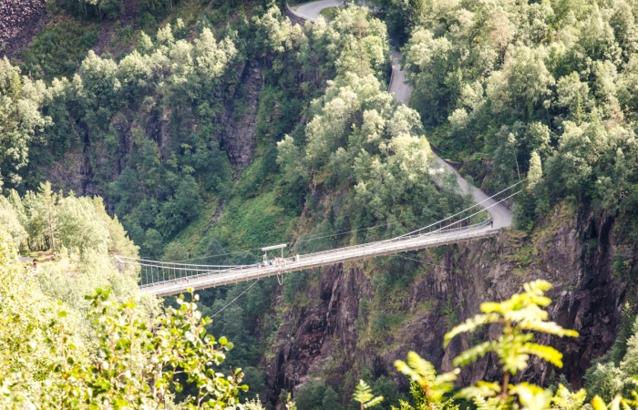 Strikkhoppingsbro
