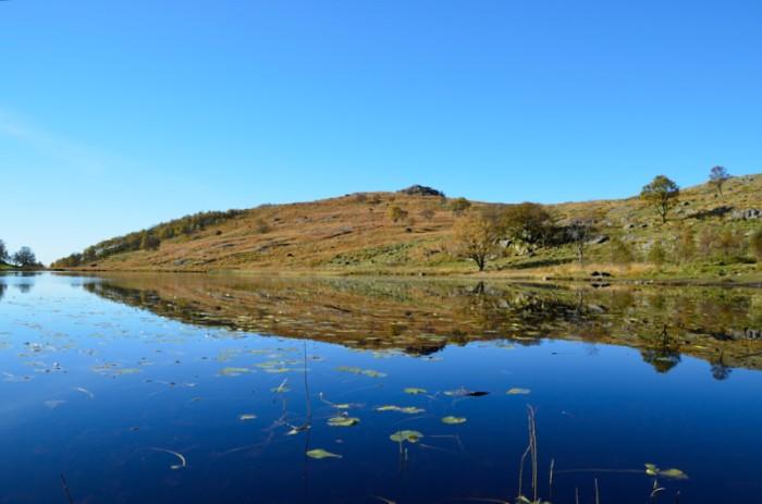 Näckros-sjön