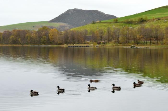 Stilla sjö