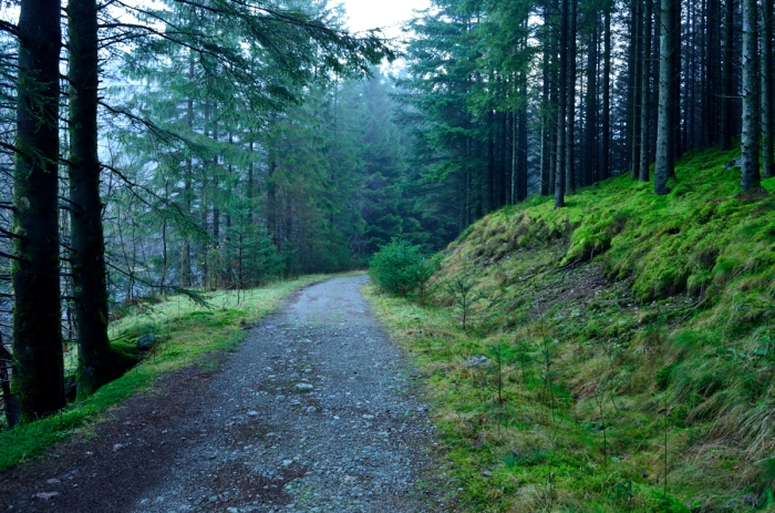 Vägen till Uburhedlaren