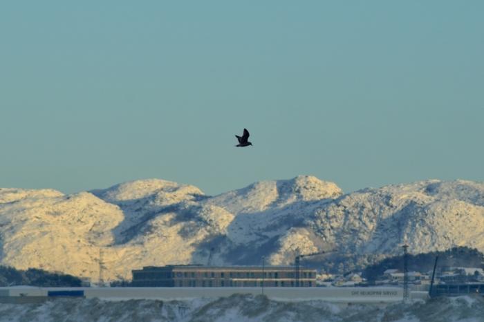 Våra berg i vinterskrud