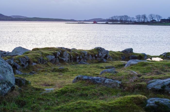 Vikingahusets vägg