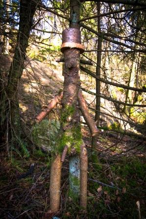 Stilig skogsman