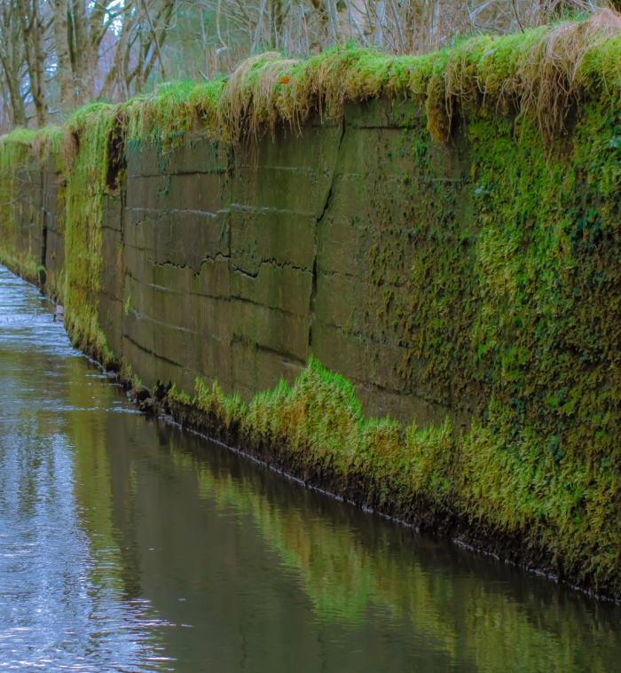 Mossig kanal