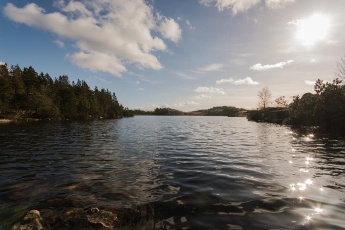 Fin fjäll-sjö