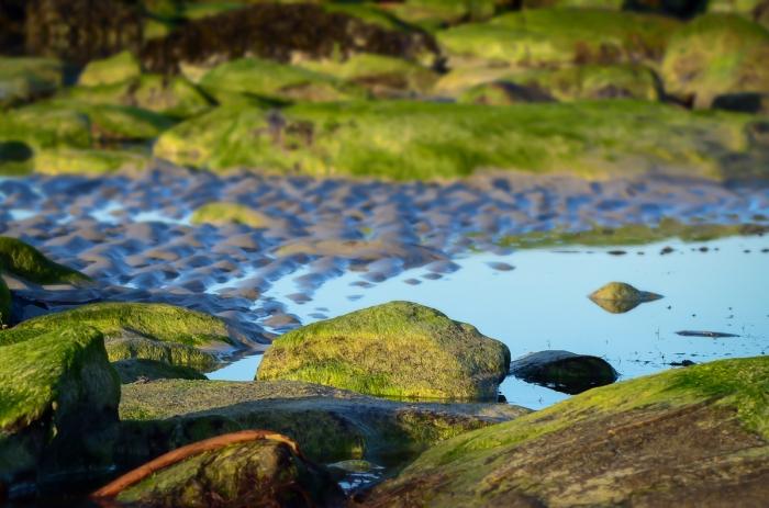 Stillhet på stranden