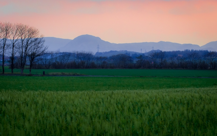 Före soluppgången