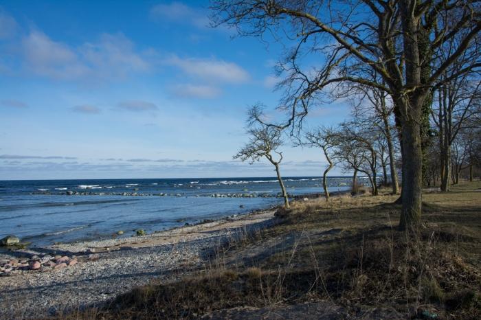 Strand norr om Visby