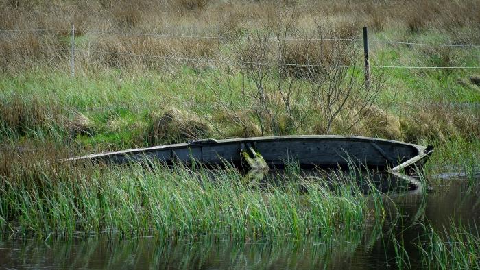 Båthaveri