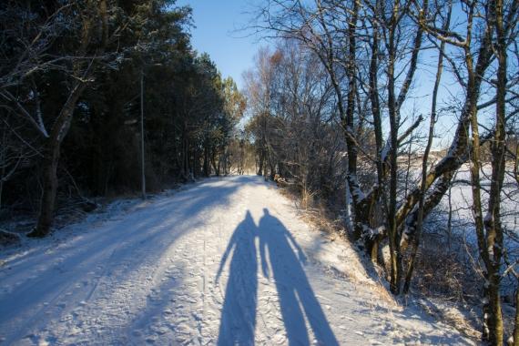 Skuggor i snön