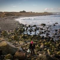 Strandstädning och vårsol