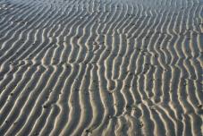 Vågmönster i sanden