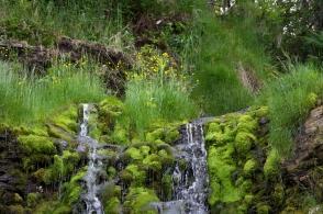 Porlande fjällvatten