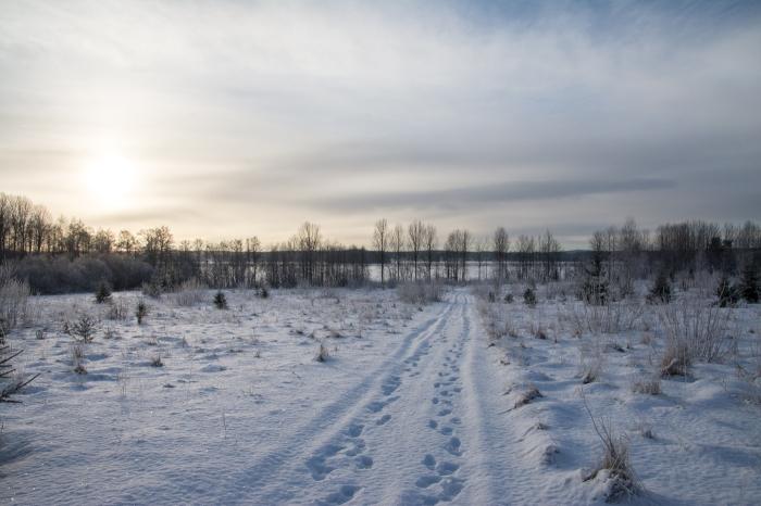Gnistrande snö