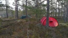 Tält i vildmarken