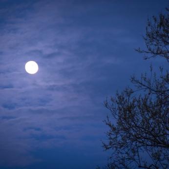 Nästan fullmåne