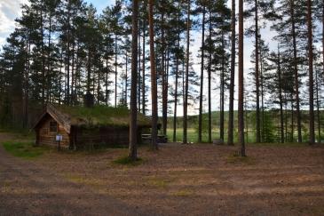 Skog och koja