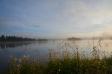 Stilla morgon
