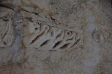 En fossil