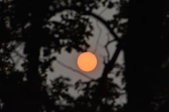 Förmörkad sol