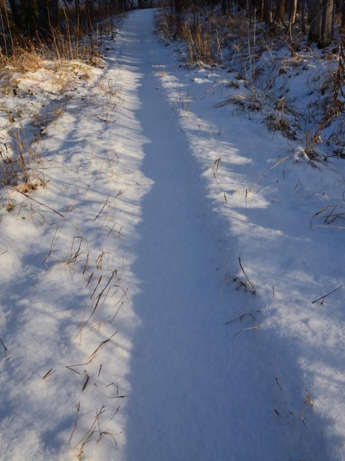 Orörd snö