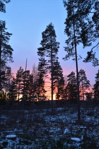 Solnedgång i Fagersta