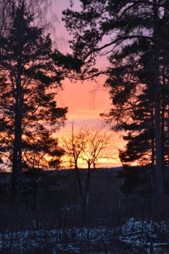 Vackra färger i solnedgången
