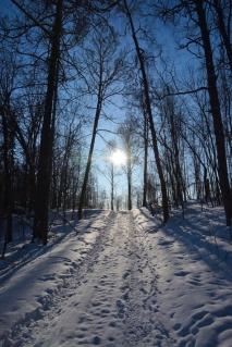 Sol och snöig väg
