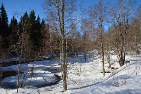 Vinter vid Hedströmmen