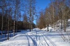 Härlig vinterväg