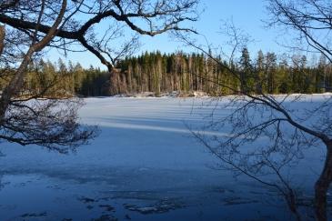 Långa skuggor på isen