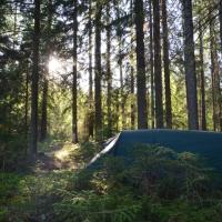 Övernattning och event vid Billsjön