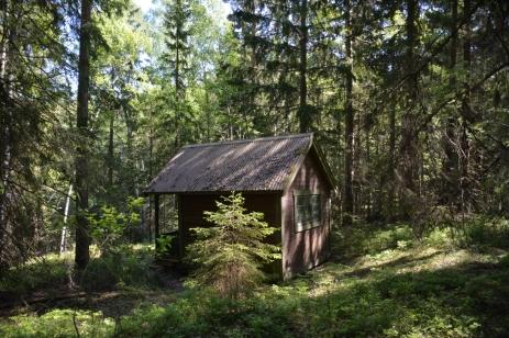 Ett litet hus i skogen