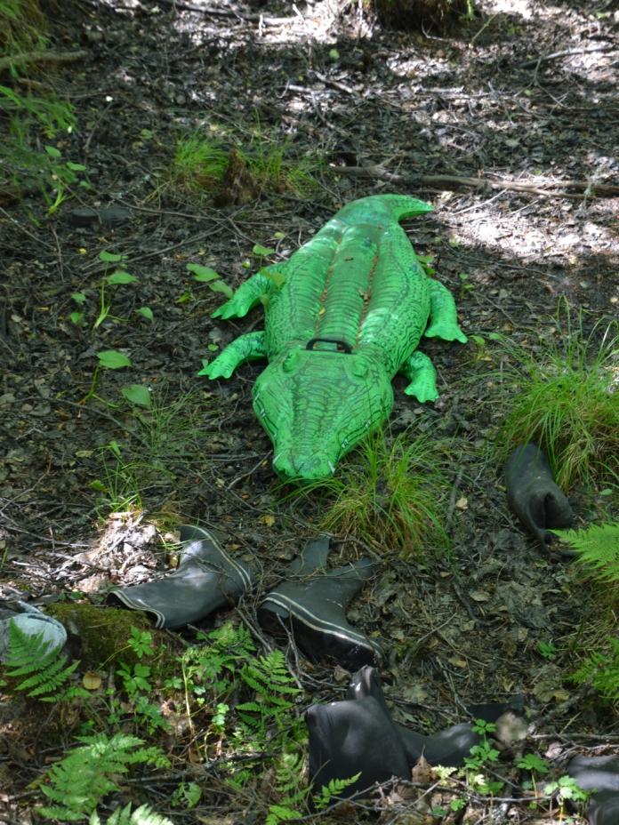 Träsk-krokodil