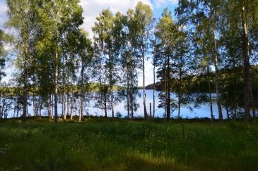 Östra Skälsjön