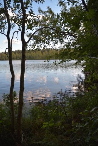 Kväll vid Östra Skälsjön