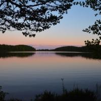 Vildmark i Västmanland - Östra Skälsjön