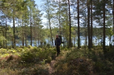 Vandring på bruksleden, Östra Skälsjön